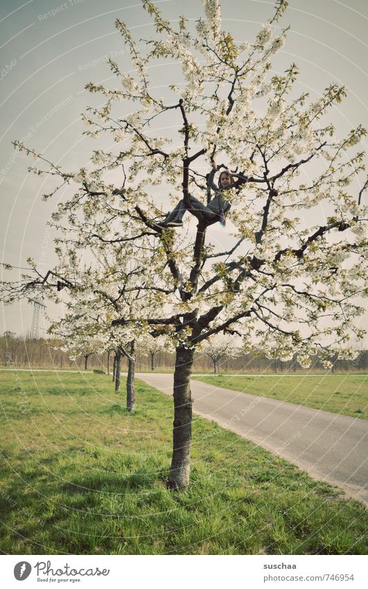 ... spring Child Girl Boy (child) Infancy 3 - 8 years 8 - 13 years Environment Nature Landscape Spring Climate Climate change Tree Free Cherry tree