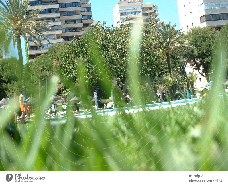 Water Sun Summer Swimming pool Observe Hide