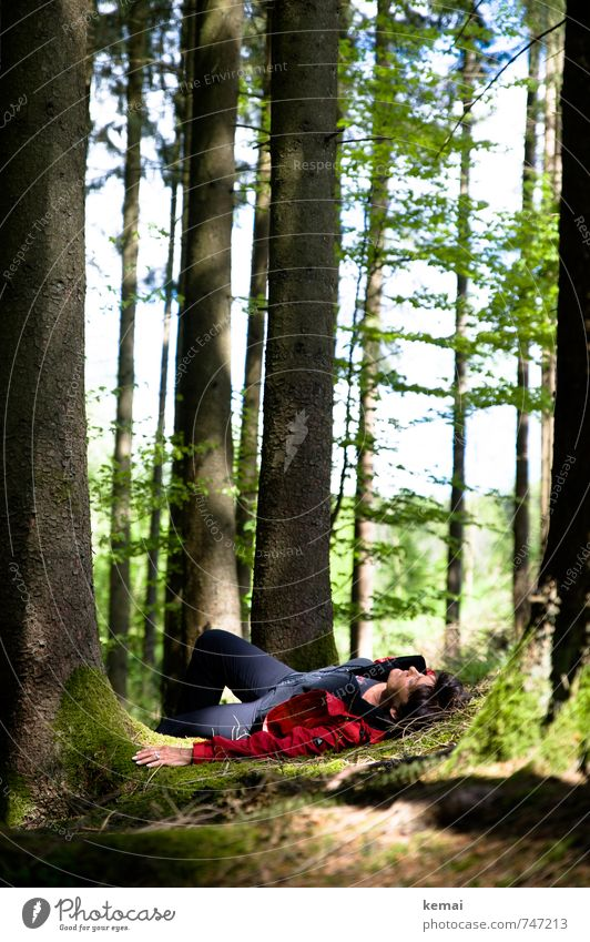 Human being Nature Green Tree Relaxation Red Hand Calm Landscape Forest Environment Adults Life Feminine Legs Head