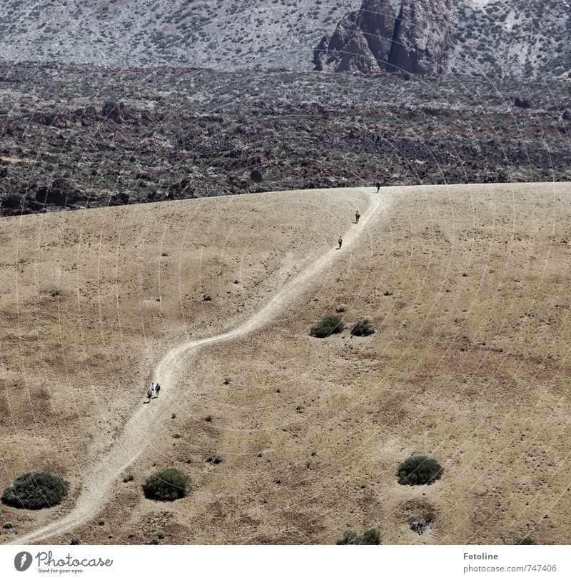 The way is the goal Human being Environment Nature Landscape Elements Earth Sand Plant Bushes Rock Mountain Volcano Desert Dry Brown Lanes & trails Target Stone