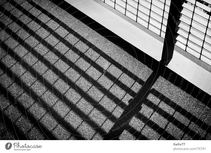 shadow play Light Square Geometry Grating Harmonious Calm Comforting Converse Shadow Structures and shapes Black & white photo