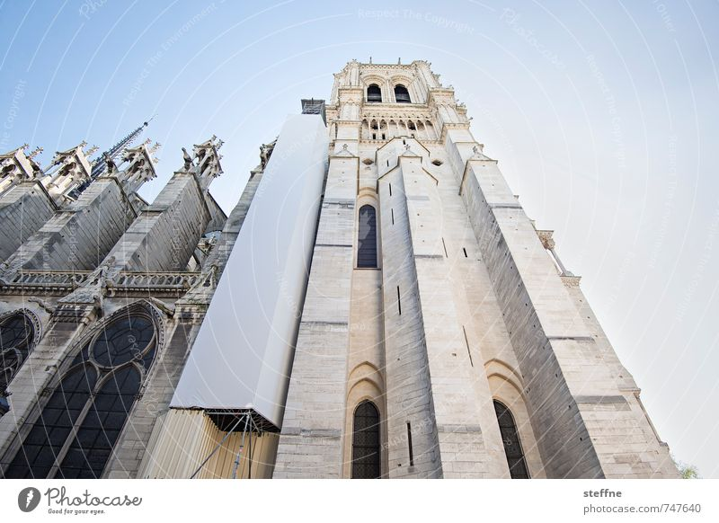Spring Religion and faith Church Beautiful weather Landmark Paris Tourist Attraction Scaffold Notre Dame