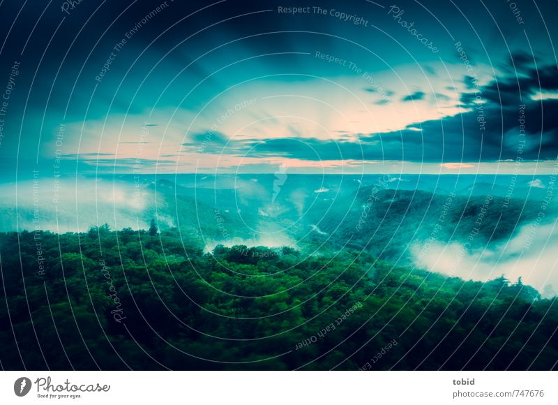 A cloudy day Nature Landscape Plant Air Water Sky Clouds Horizon Weather Bad weather Storm Wind Fog Tree Forest Hill Movement Leisure and hobbies Infinity