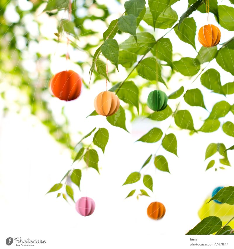 wind chimes Garden Feasts & Celebrations Nature Plant Leaf Foliage plant Funny Yellow Green Orange Pink Red Idea Uniqueness Decoration Wind chime Paper