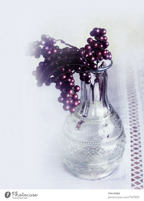 Decoration Plant Glass Kitsch Gloomy Dry Red White Vase Berries Table decoration Flower Early fall Autumnal Winter Winter mood Mystic Jinxed Flower arrangement