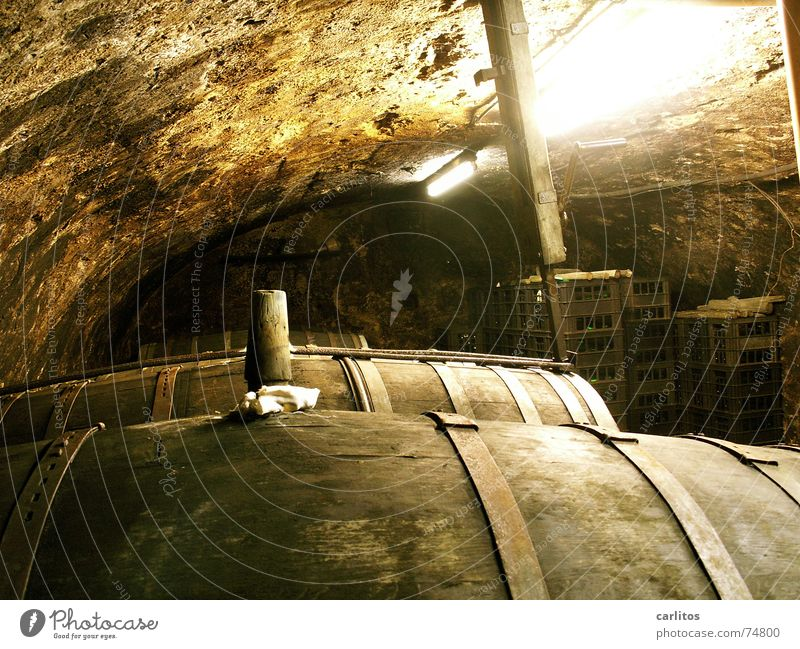 Wine barrels in an old wine cellar Mosel (wine-growing area) Wine growing Cellar Oak barrel Red wine Wine tasting Blackout Mineral water Cellar arch