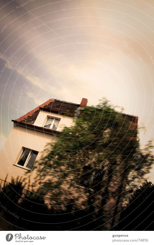 { ASYMMETRY OF HOUSE } House (Residential Structure) Dream Tree Well-being garden crooked after the fest before falling down see clearly Garden