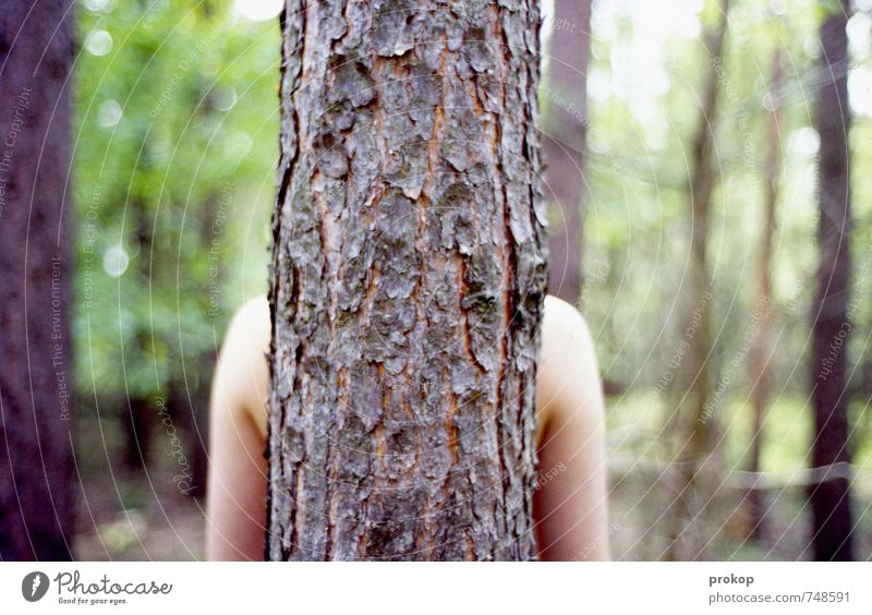 Human being Nature Youth (Young adults) Plant Beautiful Tree Relaxation Young woman Calm Landscape Forest Environment Adults Life Emotions Feminine