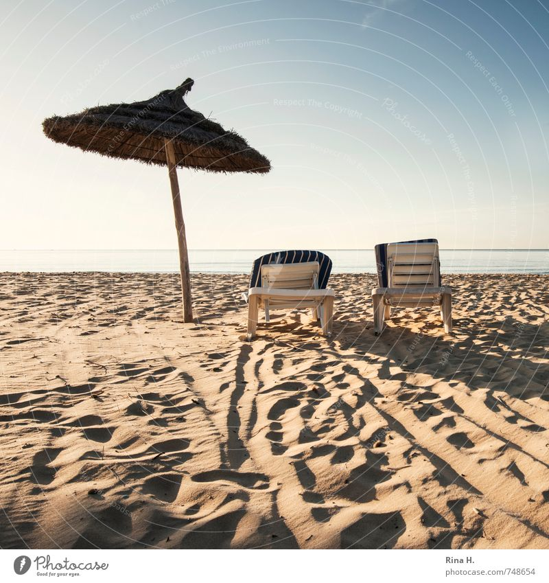 Sky Vacation & Travel Ocean Relaxation Calm Beach Spring Horizon Together Wait Tourism Beautiful weather Tracks Sunbathing Summer vacation Deckchair
