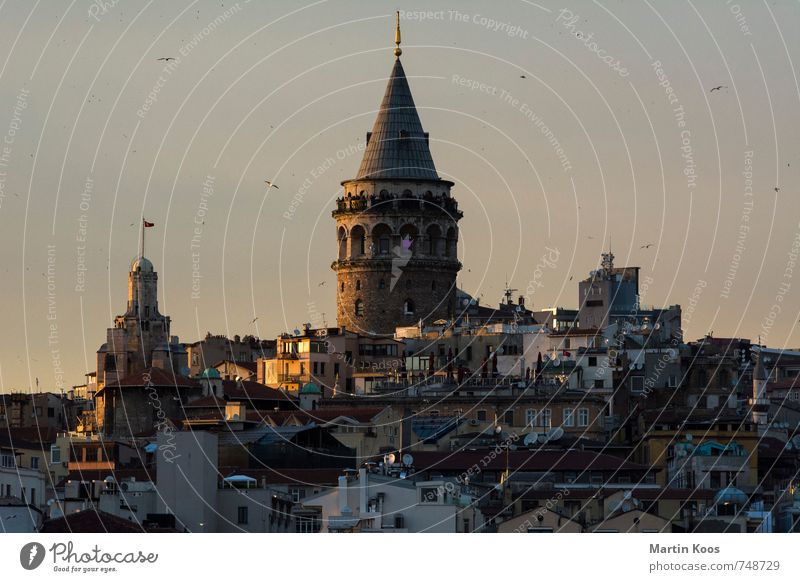 Vacation & Travel City Warmth Tourism Esthetic Tower Historic Castle Skyline Downtown Landmark Tourist Attraction Port City Istanbul Galata Bridge
