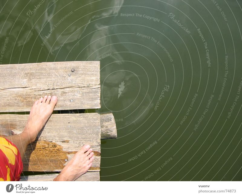 A day at the lake Footbridge Lake Swimming trunks Pond Summer Water Feet Swimming & Bathing Skin