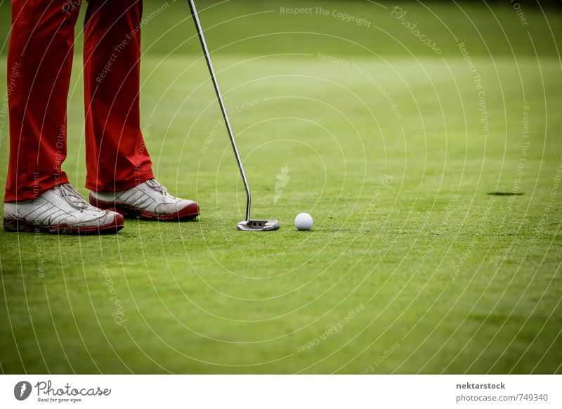 Golfers playing Lifestyle Leisure and hobbies Playing Golf course Sports Human being Nature Diligent Frustration Ball green golfing grass player court leisure