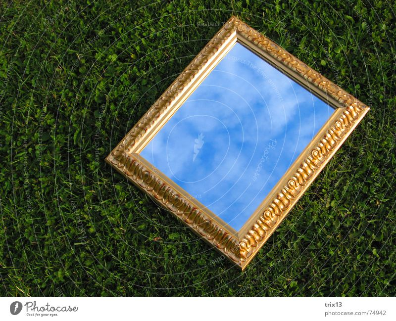 mirror image Mirror Meadow Clouds Grass Green Reflection Rectangle Sky Gold Frame Lie Partially visible
