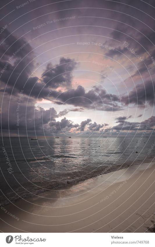 desire Harmonious Relaxation Calm Meditation Tourism Far-off places Summer Summer vacation Beach Ocean Island Waves Nature Landscape Sky Horizon Sun Sunrise