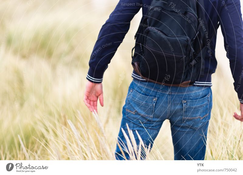 Dunewalker Human being Masculine Young man Youth (Young adults) Man Adults Back Arm Hand Bottom 1 18 - 30 years Environment Nature Plant Climate Weather Grass
