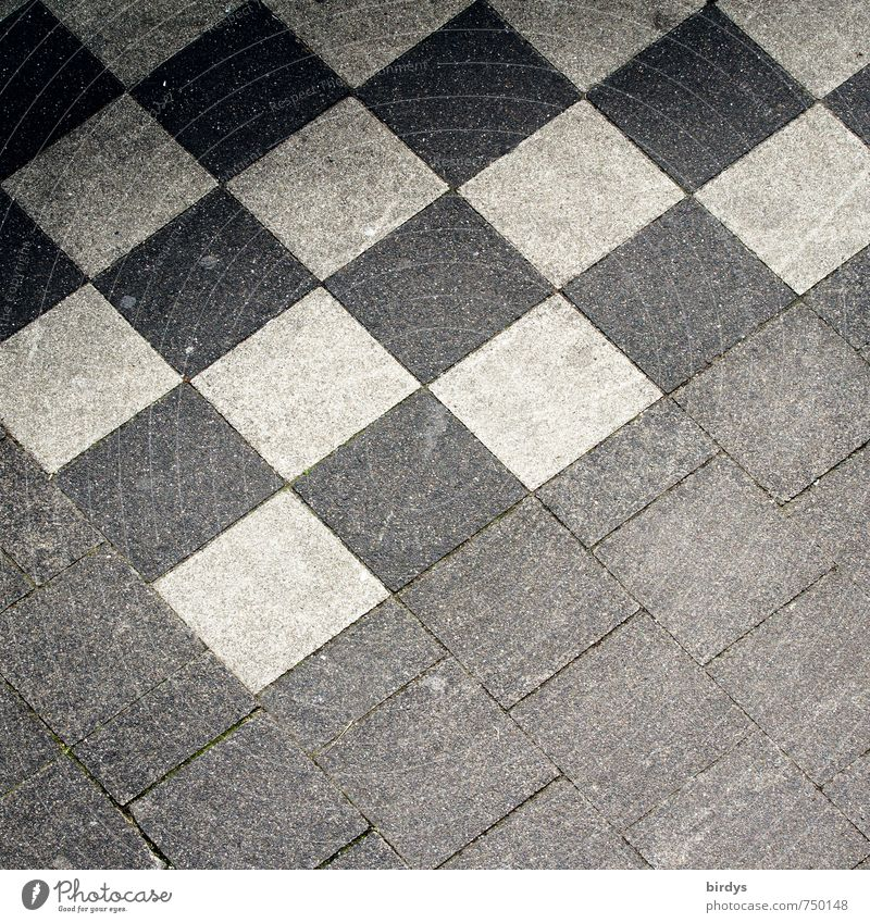 City White Black Gray Design Esthetic Places Simple Sidewalk Square Positive Partially visible Checkered Symmetry Chess Paving tiles