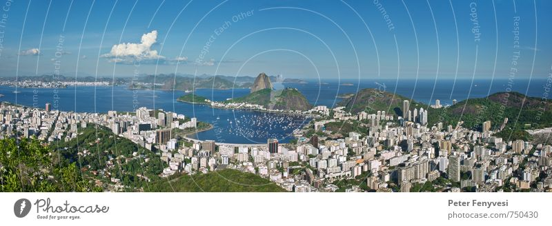 Blue City Water Summer Landscape Calm Moody Hill Bay Landmark Tourist Attraction Americas South America Brazil Rio de Janeiro Yacht harbour