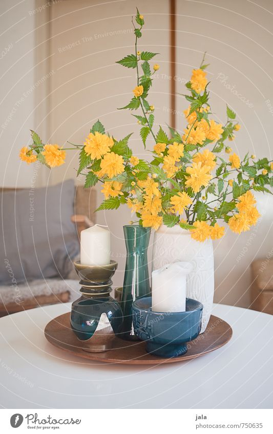 ranunculus Living or residing Flat (apartment) Interior design Decoration Armchair Table Plant Flower Leaf Blossom Buttercup Vase Candle holder Esthetic