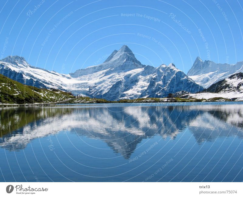 bugle Schreckhorn White Lake Reflection 2 Meadow Panorama (View) Mountain Point Snow Sky Blue Water Nature Alps Antlers Idyll double Vantage point