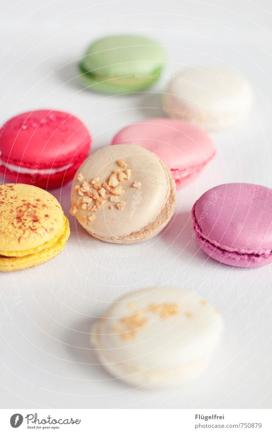 Colorful calorie bombs Nutrition Sweet macarons Cracknel Unhealthy Delicious Candy Yellow Pink Pastel tone Tablecloth Filling Baked goods Cake Baiser