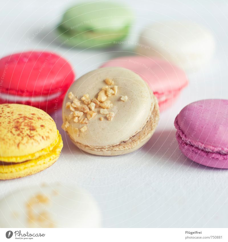 Colorful calorie bombs 2 Nutrition Sweet macarons Baked goods Baiser Cracknel Granules Pastel tone Candy Cake Colour Colour photo Interior shot