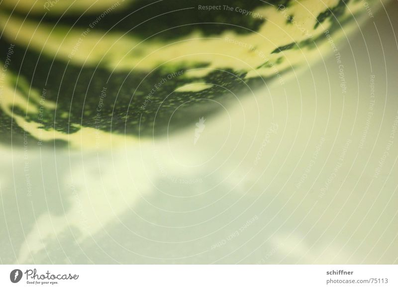 Pumpkin 5 Autumn Reflection Mirror Green Striped Background picture Structures and shapes