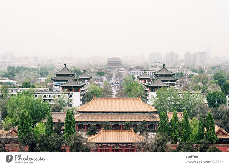 far east Tree Beijing China Old town House (Residential Structure) Palace Town Far East drum tower Haze Environmental pollution Cinese architecture Colour photo