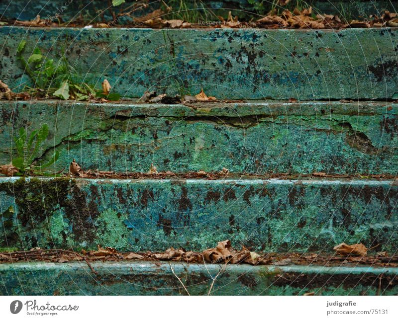 levels Parallel Green Turquoise Swimming pool Derelict Leaf Decline Flake off Downward Horizontal Autumn Verdigris Weathered Stairs Line Blue Old Colour Above