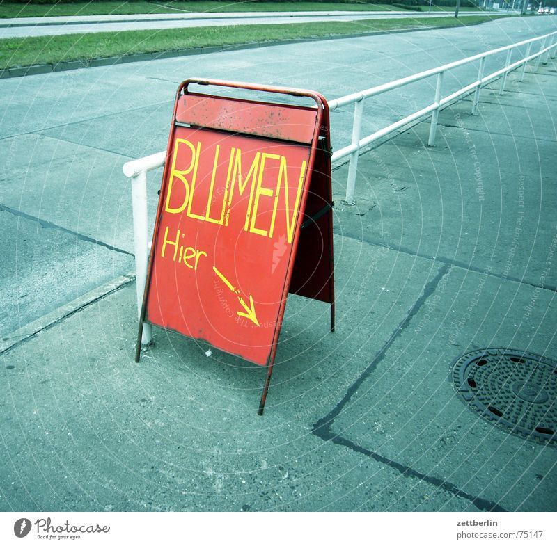 White Flower Green Blue Red Black Yellow Street Death Gray Sadness Signs and labeling Empty Violet Advertising Arrow