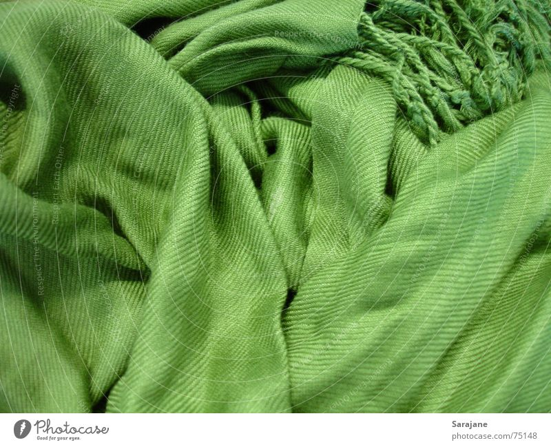 Green Winter Cold Snow Autumn Warmth Fashion Clothing Cloth Physics Wrinkles Muddled Neck Safety (feeling of) Cuddly Textiles