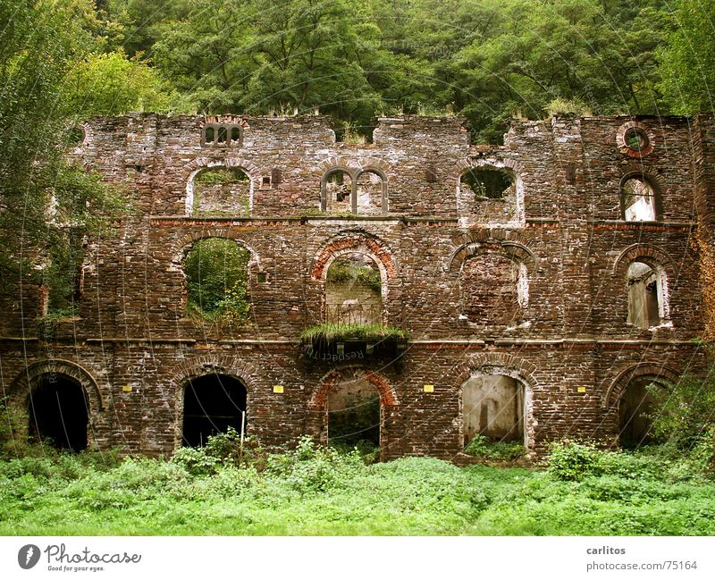 façade Facade Ruin Derelict Tumbledown Historic Arch Balcony window openings Old nature recaptures everything
