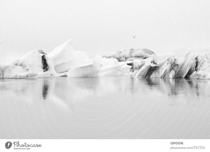 Iceland II Environment Landscape Water Glacier Jökulsárlón Esthetic Cold Gray White Black & white photo Exterior shot Day Contrast Reflection