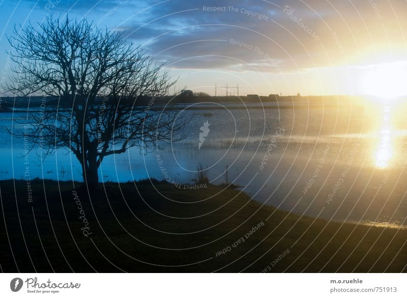 The Great Escape Environment Nature Landscape Plant Air Water Sky Clouds Horizon Sun Sunrise Sunset Sunlight Winter Climate Beautiful weather Wind Tree