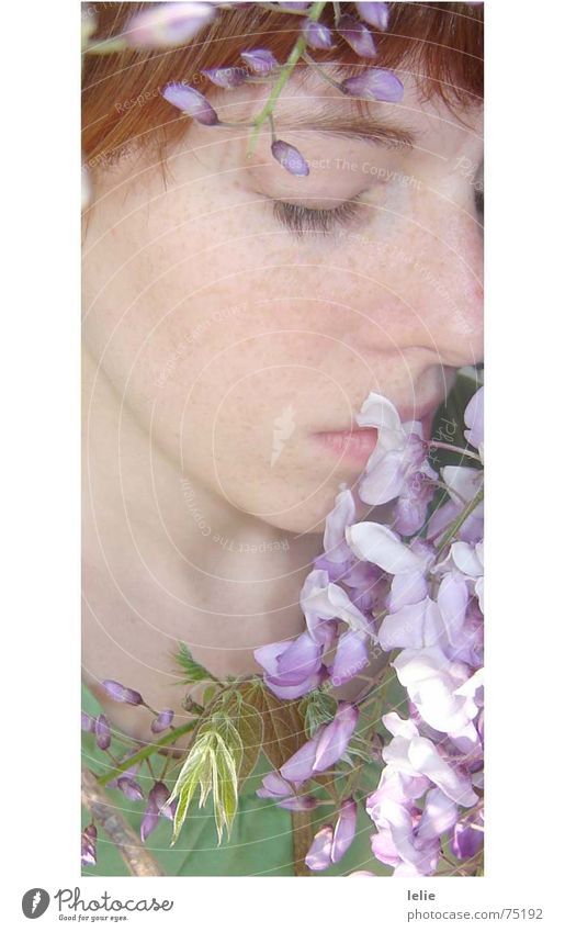 Woman Flower Green Plant Eyes Spring Dream Violet Delicate Fine Fairy tale Freckles Dreamily Elf Collarbone
