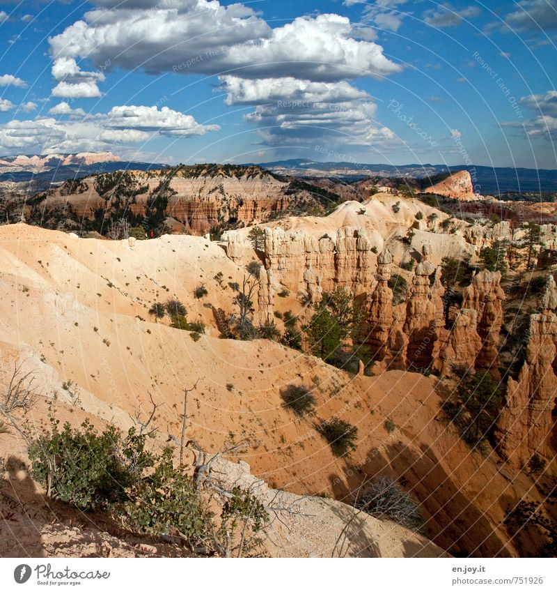 Human being Sky Nature Vacation & Travel Blue Landscape Clouds Far-off places Yellow Lanes & trails Freedom Rock Horizon Bushes Climate Hiking