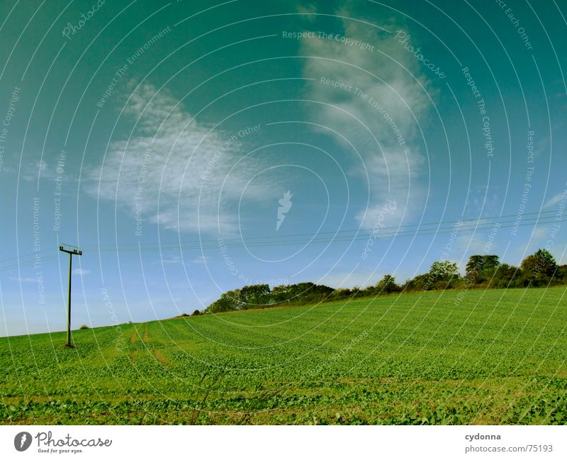 Nature Sky Green Summer Clouds Far-off places Landscape Moody Field Trip Hill Agriculture Harvest Overhead line