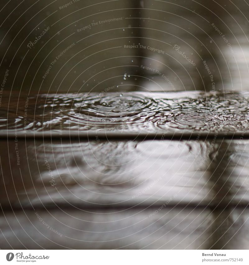 Out there. Water Drops of water Bad weather Rain Esthetic Brown Gray Black White Circle Terrace Wood Reflection Surface of water Water reflection Inject Sadness