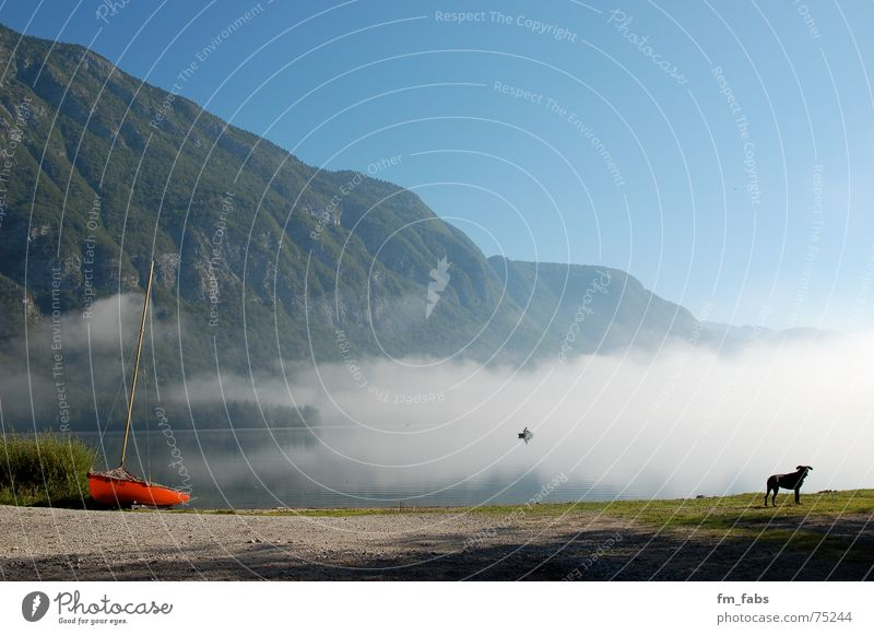 Blue Clouds Dog Lake Watercraft Fog Mirror Smoothness Angler Slovenia