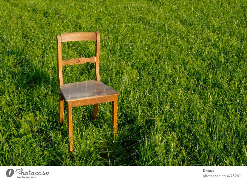 chair Meadow Green Wood flour Abstract Art Bright green Chair Lawn grass Loneliness alone