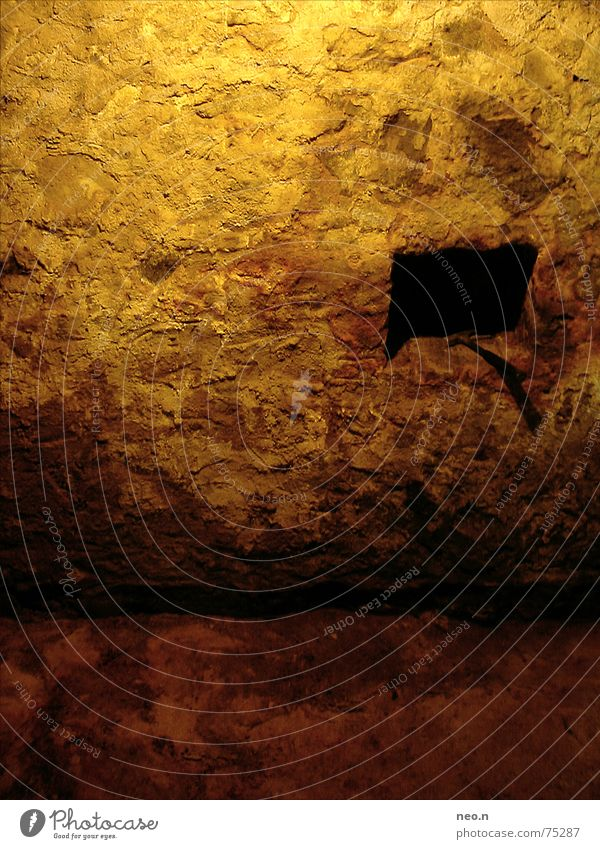 House (Residential Structure) Dark Wall (building) Wall (barrier) Stone Rock Brown Fear Putrefy Cellar Cellar arch Masonry Catacomb Cellar wall