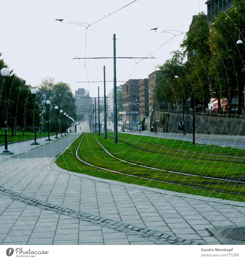 It's going downhill. Railroad tracks Grass Downward Lantern Sidewalk Tram Vanishing point Oslo September Tree House (Residential Structure) Town Lawn green
