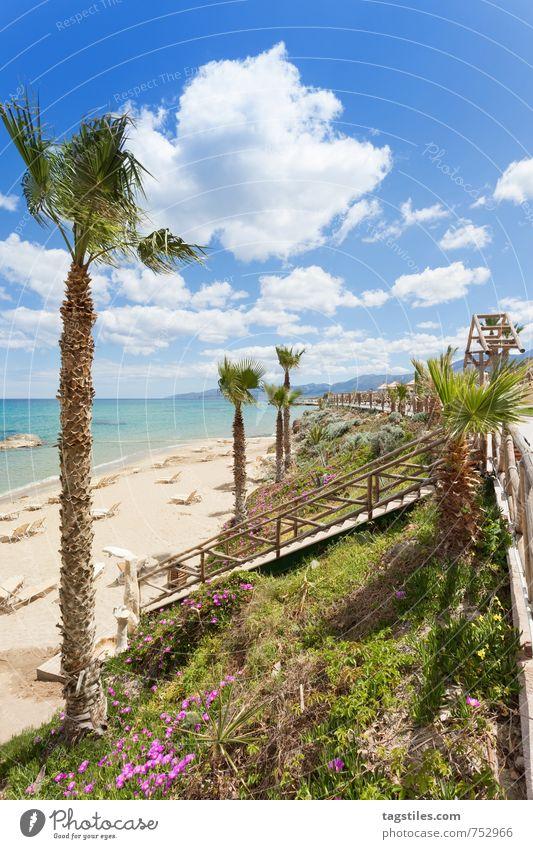 BEACH OF CHERSONISSOS Crete Greece Chersonissos Hersonissou Palm tree Vacation & Travel Travel photography Idyll Card Tourism Sunbeam Summer Paradise Heavenly