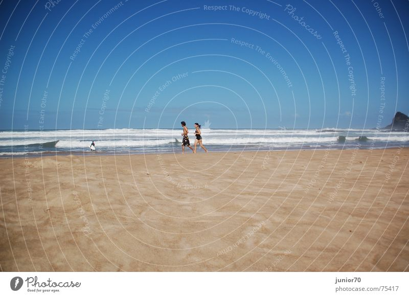 Human being Woman Sky Nature Man Water Vacation & Travel Beach Adults Relaxation Graffiti Sports Freedom Happy Sand Couple