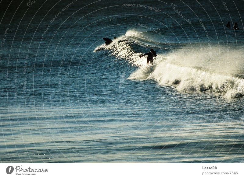 Surfing the sunset Waves Ocean Australia Byron Sports Water