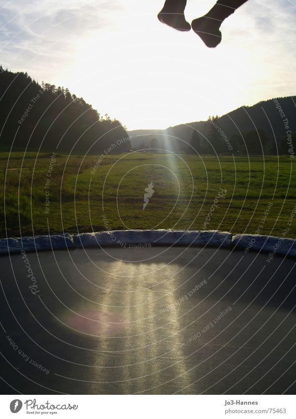 Departure II Jump Hop Trampoline Abdomen Pants Stockings Black Forest Meadow Evening sun Athlete Life Aloof jumping sheet Legs Feet Sun Power Joy Tall