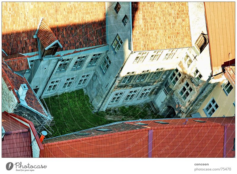 Tallinn Courtyard Backyard Bird's-eye view Insight Meadow Decline Estonia Interior courtyard northeastern europe