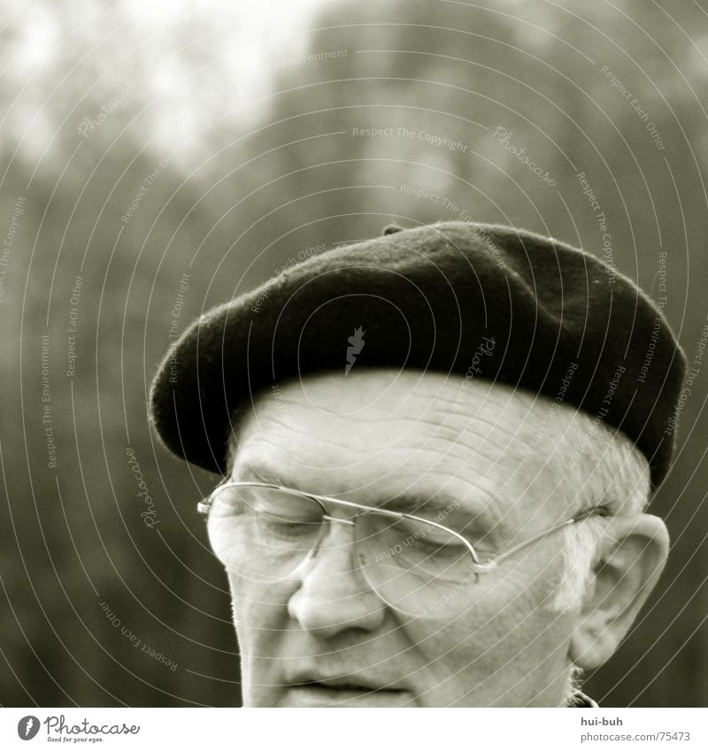 grandfather Grandfather Man Baseball cap Eyeglasses Closed White Breakdown Gray Tree Facial expression Concentrate Old Painter Painting (action, work) Life