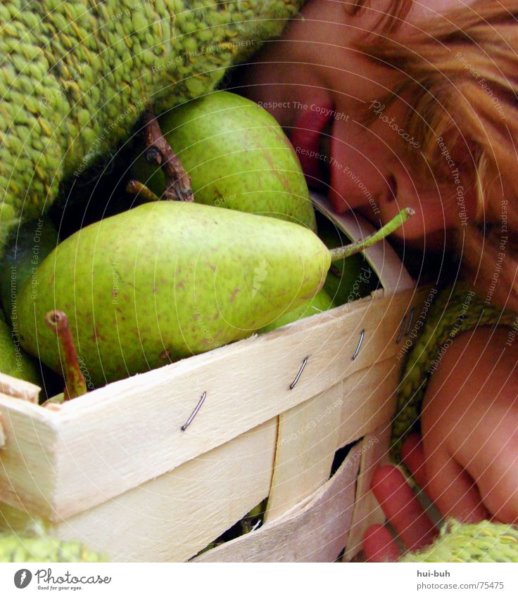 pear basket Green Basket Collection Sweater Stapler Hollow Knit Knitted Sweet Cute Large Rescue Delicious Protection Savior Stalk Edible Tree Animal Pear