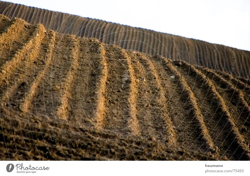 Autumn Landscape Brown Field Earth Stripe Hill Agriculture Plow