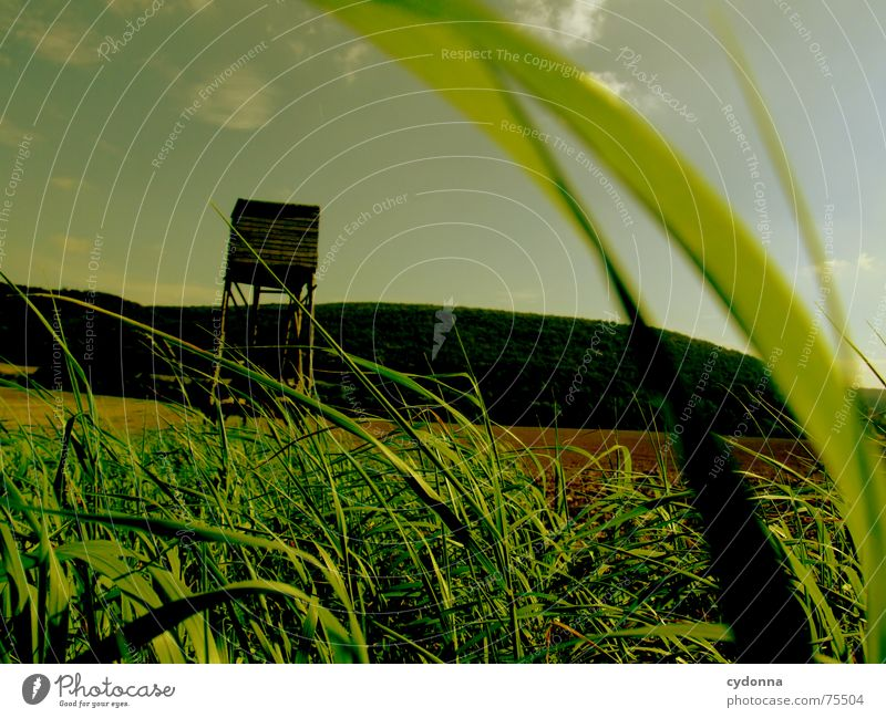 Let's go hunting! Hunting Blind Field Grass Agriculture Moody Bird's-eye view Green Summer Mountain Landscape Sky Perspective Wind Blow Earth Floor covering